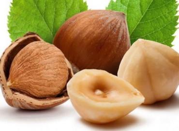 Intesa con Ferrero, più nocciole in Toscana